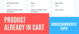 Woocommerce: How to Show Product Already in Cart button